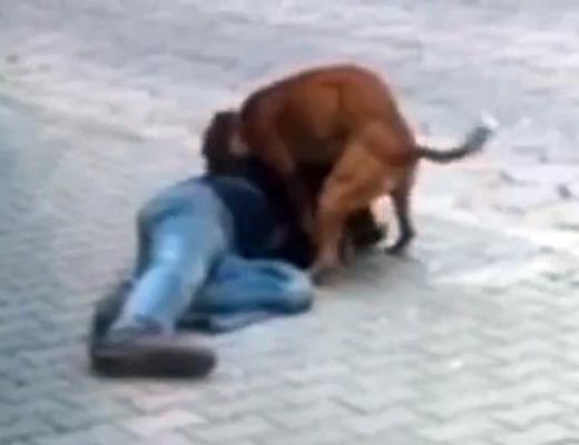 【獣姦レ●プ】酔っ払った人が路上で犬にレ●プされてる映像が話題に!
