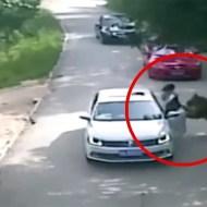 【閲覧注意】ヤバい映像来た。サファリパークで車の外に出た女がトラに殺される・・・