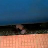 【閲覧注意】ちょっと目を話した隙に・・・ホームの隙間から落ちた子供が母親の目の前で電車に・・・・・・ ※動画