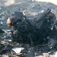 【グロ画像】国連のパンくん仕事しろ。150人が死亡した悲惨過ぎるイエメン空爆現場・・・ 閲覧注意