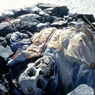 【グロ画像】富士山で滑落して死亡したらこんな風になるんやろな・・・