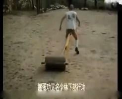 【衝撃映像】中国4000年の歴史が誇る少林寺拳法の秘奥義が公開されたぞ!ってこんなん盗めるかいっ!!