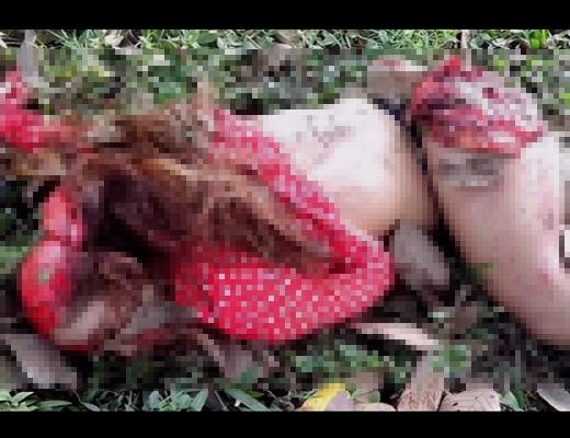 【閲覧注意】美女の惨殺死体を見て興奮しちゃう性癖を持つ変態さんにエログロのお歳暮お送りしますね!