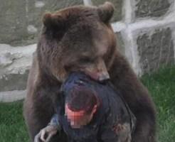 【閲覧注意】インドの農民が生きたまま熊に食べられてるんだけど・・・