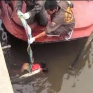 【閲覧注意】迷子の我が子が海に浮いてた・・・辛すぎる両親の反応