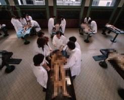 【閲覧注意】医学部の実習グロすぎ・・・・。(6枚)