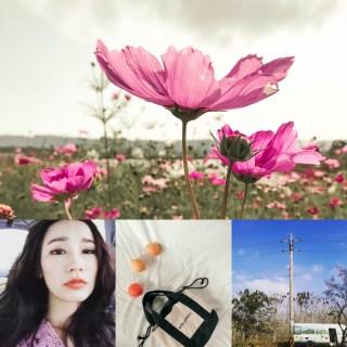 Mercci22 三月花漾的春天 | 2018購物前的必讀須知