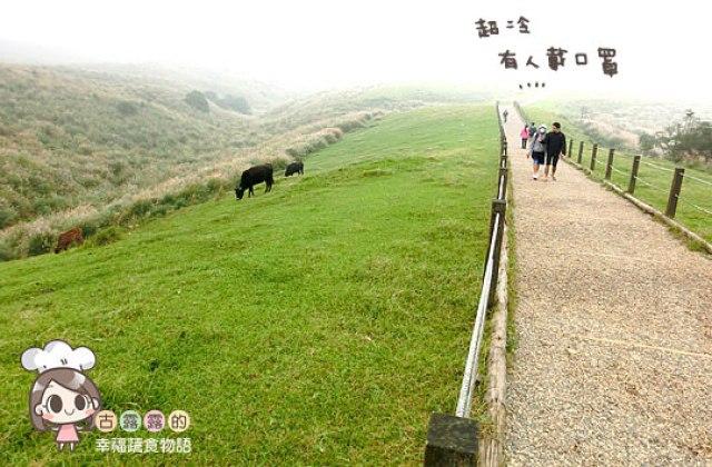 【台北】看牛看牛屎(喂)的陽明山擎天崗遊記