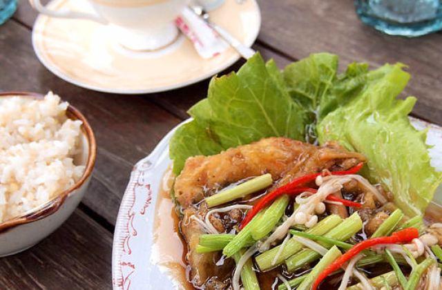 【苗栗】紫星河蔬食咖啡~太猛了餐廳蓋在樹上面!樹上喝咖啡 民宿 (已歇業