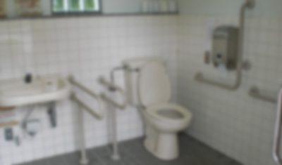 (キチク注意)大学の時、塾の教え子の美10代小娘をトイレに連れ込んだ結果・・・・・・・・・・・・・・