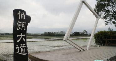 【池上旅遊】伯朗大道+大波池~一個人的旅行在池上(台東三天兩夜自助行)