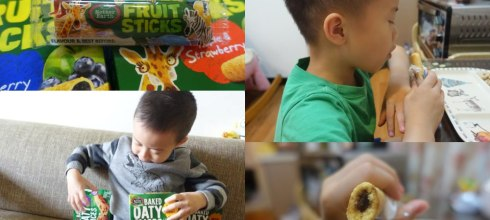 [第3團] 讓孩子遠離過敏,選天然零食|紐西蘭Mother Earth烘培燕麥棒+水果棒
