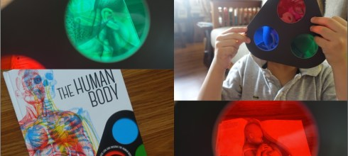[幼兒STEAM科學書單] 好玩的三色鏡魔法書 Lens Book The Human Body與Lens Book Animals