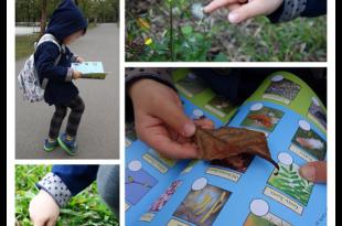 在森林裡找故事●THE GRUFFALO Spring Nature Trail●古肥玀自然圖鑑貼紙書
