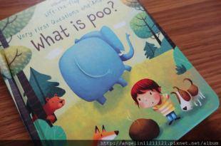 英國usborne書單 ●What is poo?翻翻書 ● 便便是什麼?也很適合戒尿布小人