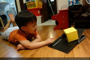 [2y6m]同大爺書報●快樂的黄色小盒子●幼兒基礎認知建議書單(2)