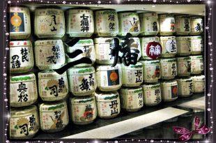 台北超奢華涮涮鍋_日式火鍋,日式雜燴粥,三燔本家的涮涮鍋