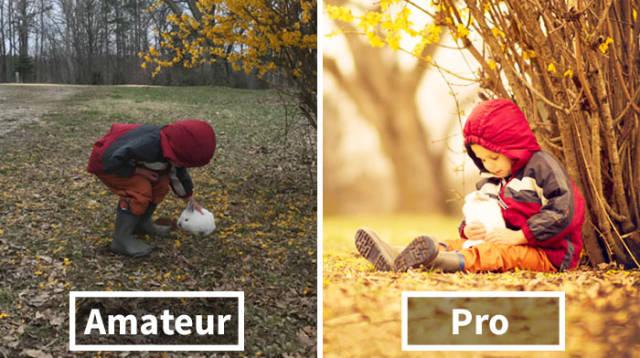 amatuer vs professional photographers ile ilgili görsel sonucu
