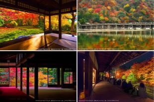 【已出團】2018京都楓葉團-京都究極完全版的『2018京都紅葉五日團』