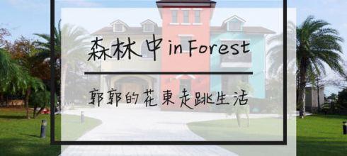 【花蓮吉安】森林中民宿in Forest┃不管山線海線都超方便的特色民宿┃
