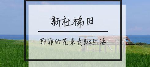 【花蓮遊記】豐濱新社梯田~最靠近太平洋的階梯式稻田美景