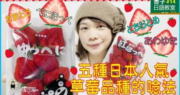 五種日本人氣草莓品種的唸法 | <杏子日語教室>14