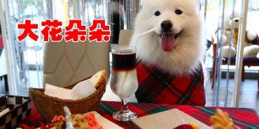 [台中北區]台中寵物友善餐廳推薦,異國料理超美味!對毛小孩好到連主人都忌妒!大花朵朵主題餐廳