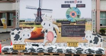 【台南景點】柳營酪農業和荷蘭村大風車做搭配 柳營打卡新景點 小牛變成最佳代言人~~砂包的家
