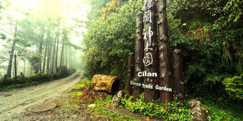 宜蘭景點推薦》棲蘭神木園 - 台灣世界遺產潛力點