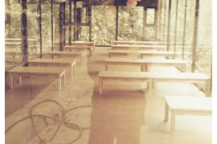 【365-49雙寶趴】場地勘察之森林鳥花園玻璃屋