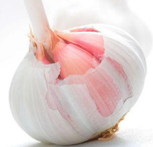 A recipe for garlic lovers