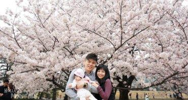 [東京賞櫻景點]新宿御苑櫻花滿開超壯觀,日本櫻花百選景點