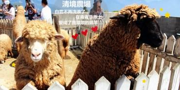 合歡山景點   清境農場 白雲不再流浪 因為它住在青青草原上 變成了圓滾滾的綿羊