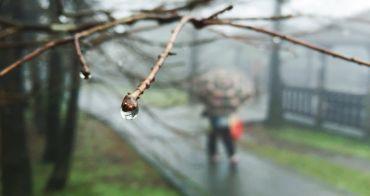 台北士林景點   冷水坑 陽明山國家公園 菁山吊橋 牛奶湖 溫泉泡腳