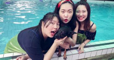 桃園寵物游泳池 林乖乖家的嬉水池:寵物的游泳天堂,下雨也可游!
