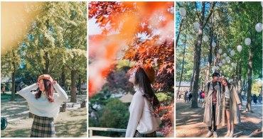 首爾一日遊景點|秋天必去!南怡島一日遊+江村鐵道自行車+晨靜樹木園/秋天限定銀杏楓葉超級美❤首爾近郊一日遊