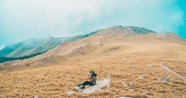 南投景點合歡山 合歡北峰:超美!單攻金黃色山脈,五六月有超美合歡高山杜鵑
