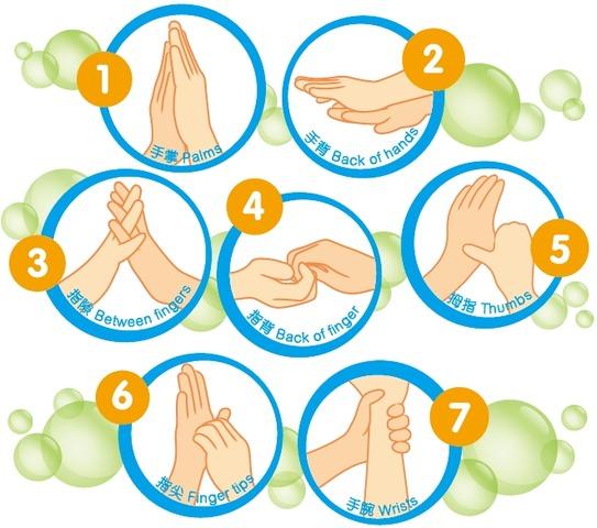 幼儿园卡通七步洗手法洗指尖图片