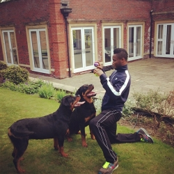 Mikel With Dogs.jpg