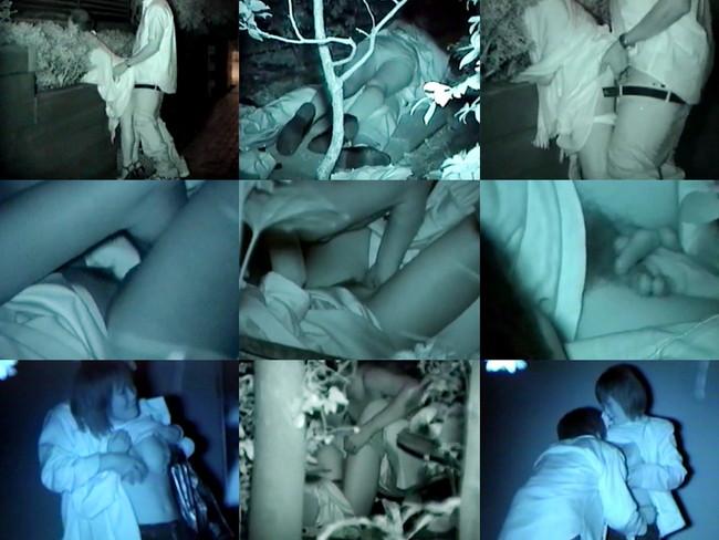 【ヌード画像】公園での素人SEXを赤外線盗撮した画像集!盗撮されようが蚊に刺されようがとにかくSEX!ww(50枚) 05