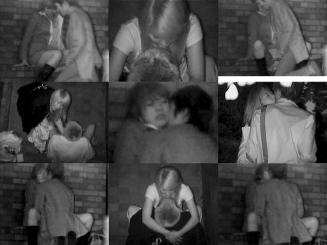 【ヌード画像】公園での素人SEXを赤外線盗撮した画像集!盗撮されようが蚊に刺されようがとにかくSEX!ww(50枚) 09