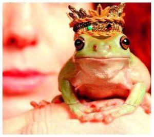 Prince-charmant1.jpg
