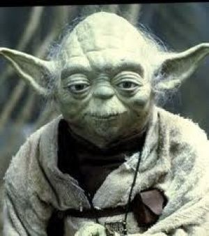 yoda.jpg
