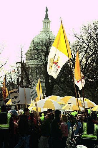 MarchforLife1-drapeaux-St-Siege.jpg