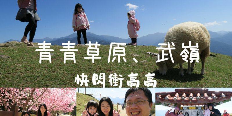 【愛遊南投】清境農場青青草原、武嶺最高點,半日快閃衝高高