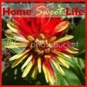 Home Sweet Life