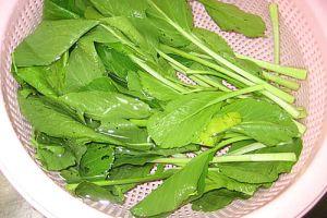 【7~8m】副食品:有機甜菜泥&黃力紅&1:5白米粥