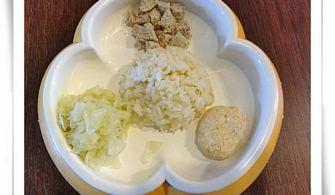 【1y~1y3m】副食品:雞肉豆腐漢堡排、白莧菜