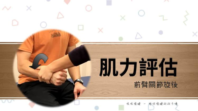 前臂旋後(MMT – Forearm Supination) – 徒手肌力測試