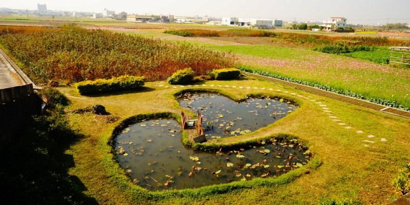 【遊記*彰化】 小情侶散步景點 雙心池塘 x 大波斯菊花海